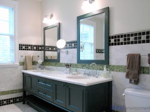 The Ideal Environment - Master Bathroom